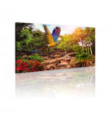 Tableau décoratif  Parrot in the forest   L100 x H 60cm - intérieur design, décoration moderne, art abstrait N51