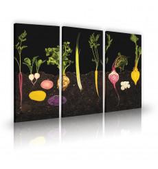 Tableau décoratif Vegetable garden  L 45 x H 100 cm (x3) - intérieur design, décoration moderne, art abstrait C191