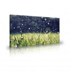Tableau décoratif  Grass water drops  L 100 x H 60 cm - intérieur design, décoration moderne, art abstrait N233