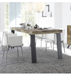Table PALMA péro 165/78/88 cm